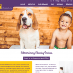Major Cleaning web site design